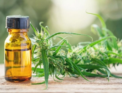 Do You Know How to Extract CBD? Info About a Few Common Methods Used in Extraction
